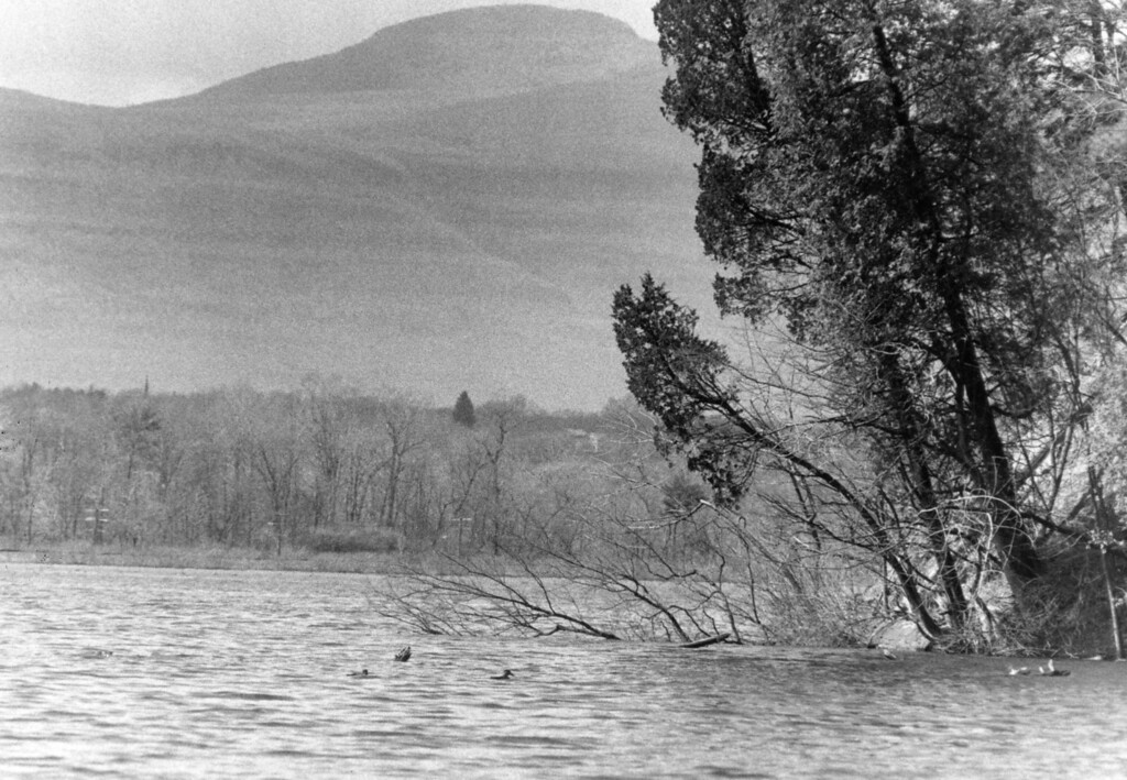 Description of . River edge view from Bard College on April 8, 1986.