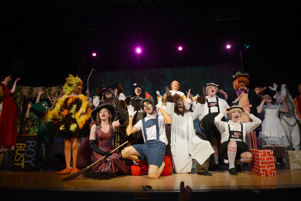 . Tania Barricklo-Daily Freeman                      A portion of the large cast of Coleman Catholic\'s production of Shrek.