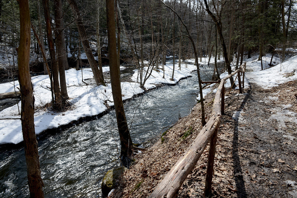 . Tania Barricklo-Daily Freeman                      Scenic Hudson\'s Black Creek Preserve in Esopus.